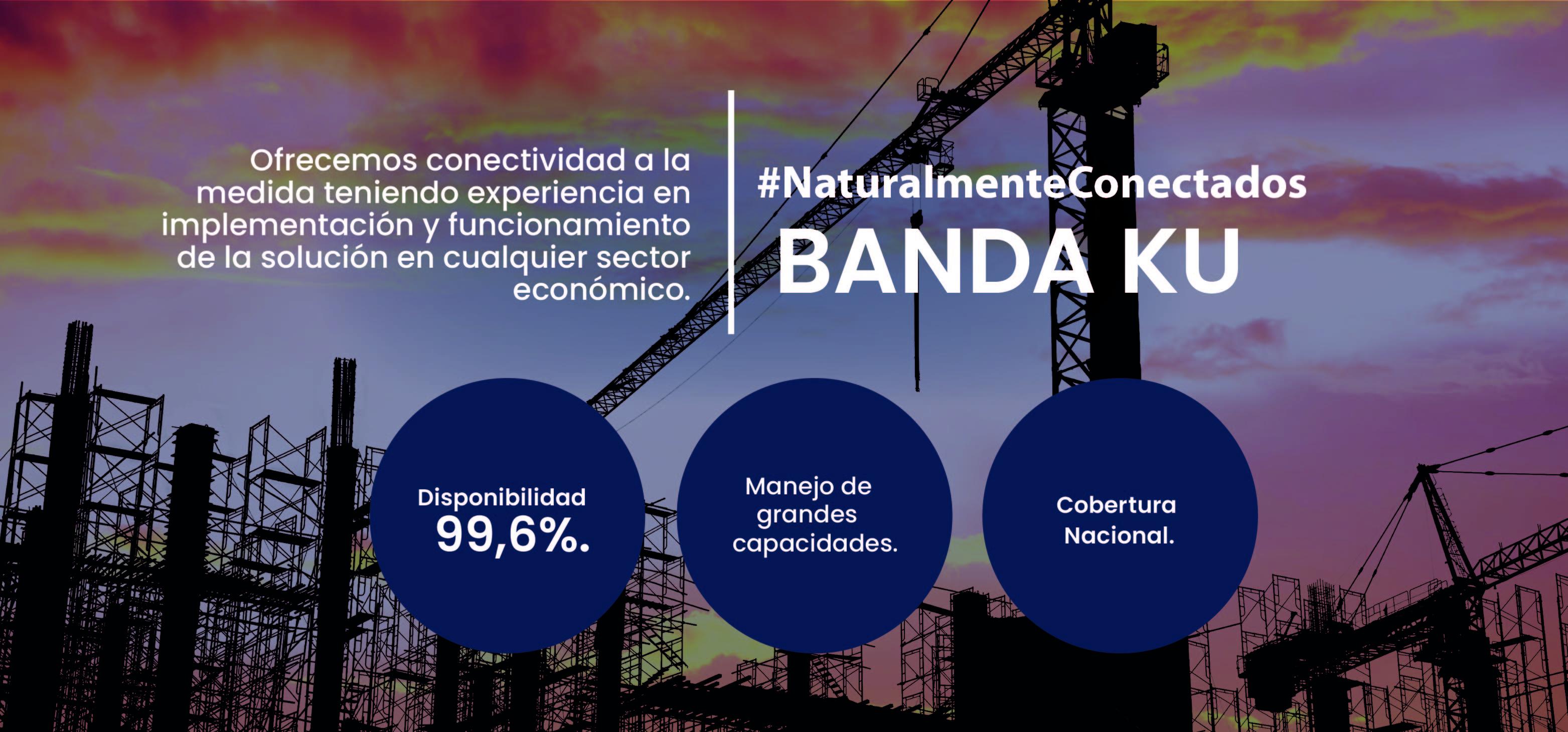 pagina web - BANDAS 2021-04