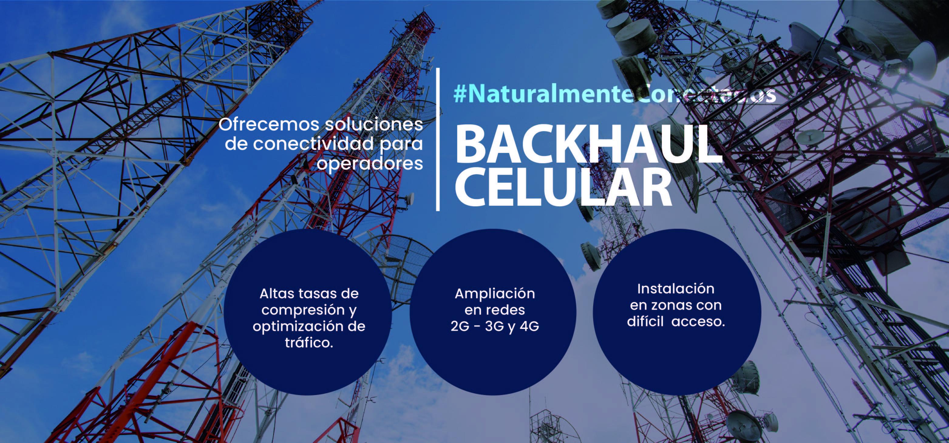 pagina web - BANDAS 2021-05 (1)
